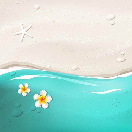 Tropisch vector achtergrond met wit zand, blauwe zee, oceaan, stenen, zeesterren en frangipanibloemen