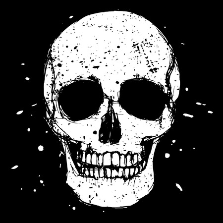 skull vector: Vector white skull on black background in grunge design style Illustration