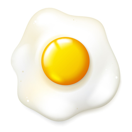 Realistic fryed egg, vector isolated breakfast food on a white background