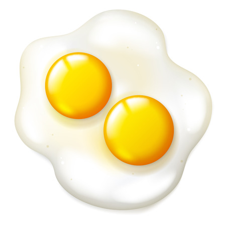 fryed: Fryed realistic eggs on a white background, vector breakfast food object