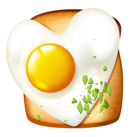 egg sandwich: Breakfast vector illustration, morning meal, toasted sandwich with fryed egg, realistic  food icon Illustration