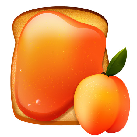 apricot jam: Peach jam breakfast toast, vector morning meal illustration, realistic isolated food  icon Illustration