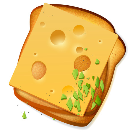 toasted bread: Toasted bread slices with cheddar cheese, vector breakfast sandwich menu illustration,  realistic food icon