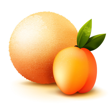 flavor: Scoop ice cream with peach flavor, vector isolated realistic illustration