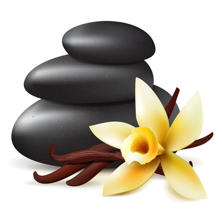 stones with flower: Spa aromatherapy, vector isolated realistic illustration with black stones and yellow  vanilla flower