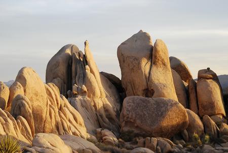 Rock formations in sunset light, Joshua tree National Park, California, USA