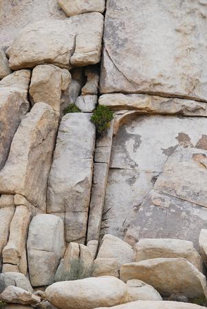 Rock formation close up, Joshua tree National Park in California, USA