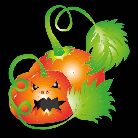 Pumpkin for Halloween. Hand drawn sketch. Clear outline. 스톡 콘텐츠 - 138092094