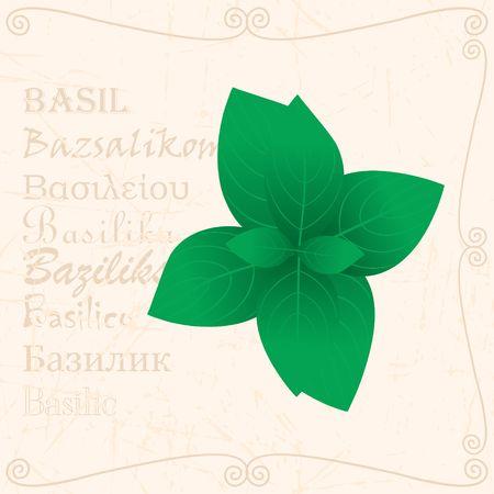 バジルは、テキストとヴィンテージスタイルで葉
