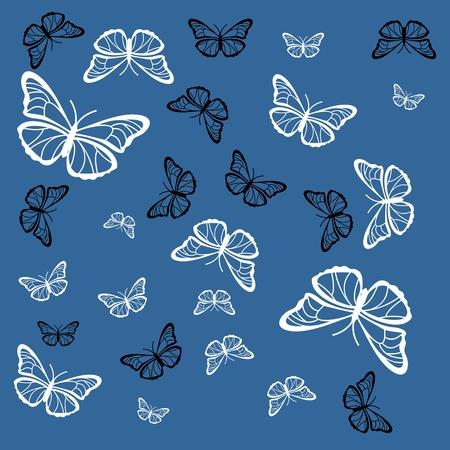 파란색 그림에 흑백 나비입니다.