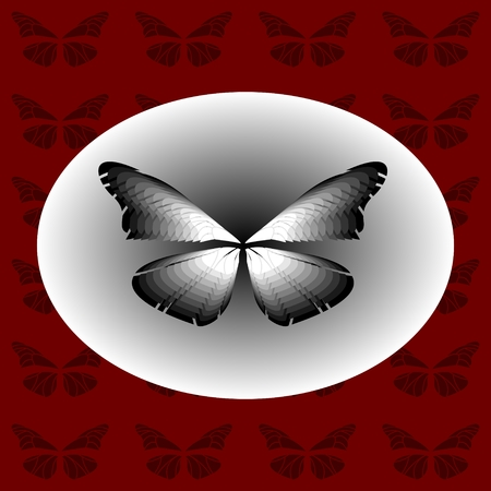 Black and White Butterfly in an ellipse on a red background