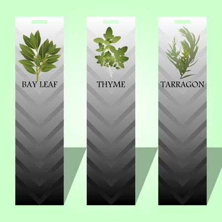 Long label with spicy herbs.