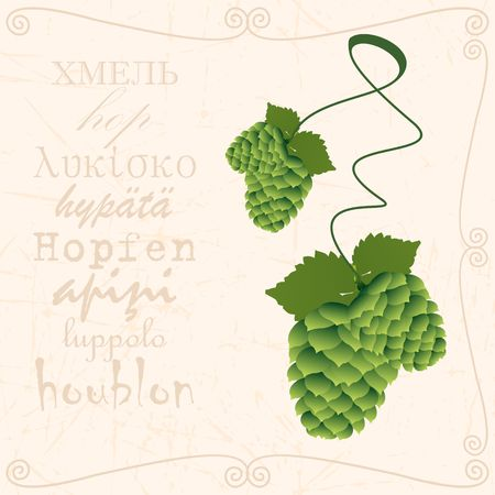 Sprig of hop in vintage style Иллюстрация