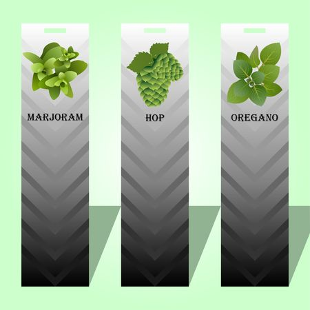 Long label with herbs Ilustrace