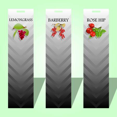 Three long labels with seasoning berries vector