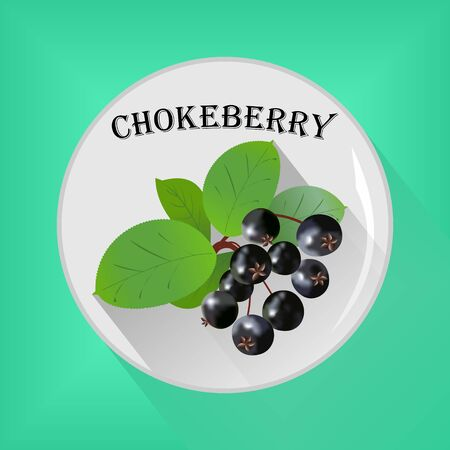 Chokeberry seasoning sticker flat icon vector image on grey and green background
