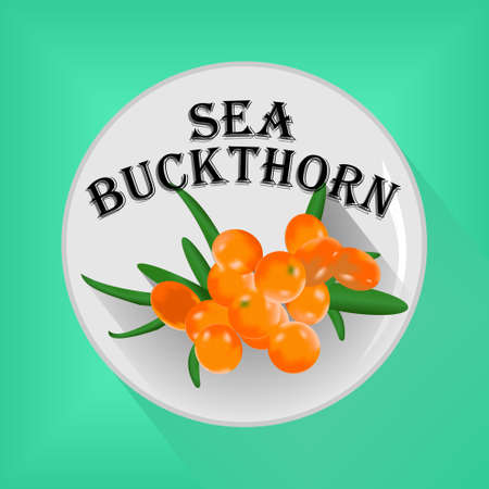 Sticker or button with a sea buckthorn image. Vector illustration