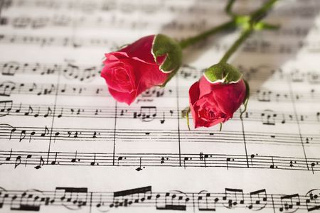 Pink roses on sheets of musical notes close up photo