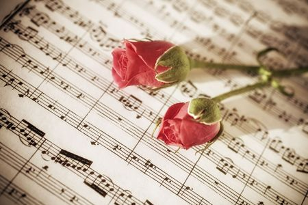 Two Pink roses on sheets of musical notes close up photo