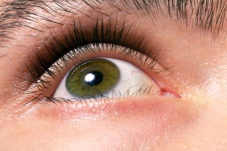 Men's beautiful green eyes close up Stock Photo - 8366142