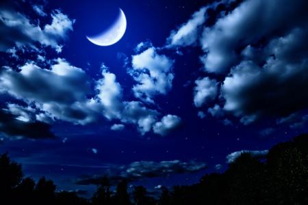Landschap met nacht zomer bos met groene bomen en heldere grote maan in donkere hemel met wolken en de sterren