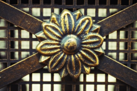 Detail of wrought old fence. Flower pattern Stock Photo - 9418651