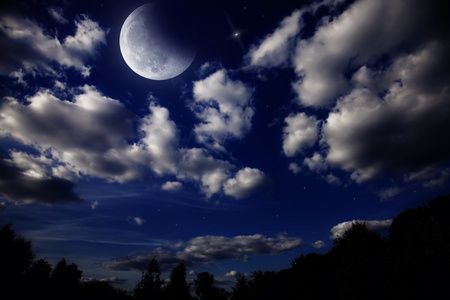 Night landscape with the moon in a cloudy sky above dark forest photo