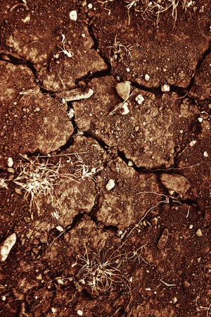 sunburned: Texture of cracked sunburned soil close up