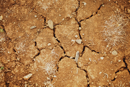 desiccation: texture of dry cracked soil close up