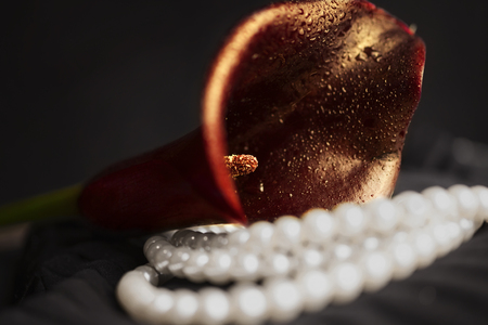 Pearl necklace and red calla flower on black cloth close-up