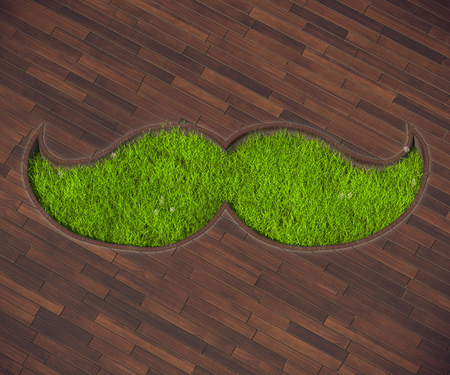 mustache: The picture combines the icon mustache and lawn. Lawn in the form of the mustache is an interesting solution for terraces outside the city.