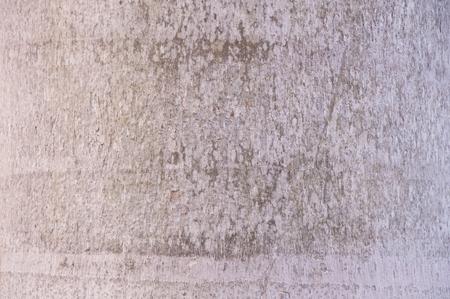bark palm tree: light brown palm tree bark texture background