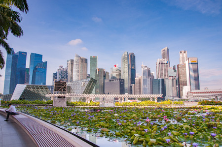 singapore building: Singapore-March 12,2016 : Singapore skyline of business district and Marina Bay in day, foreground with lotus pond and man