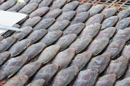 gourami: Dried gourami fishes row for sale in the market