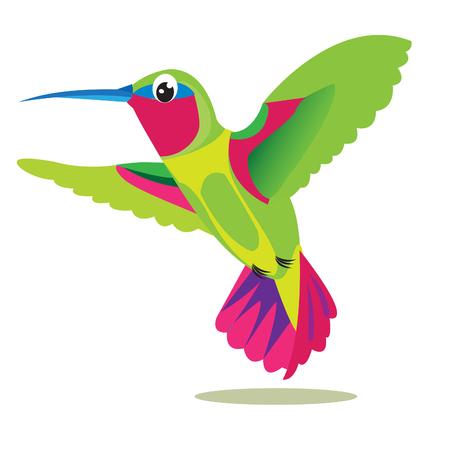 Colibri Bird. Kleine gekleurde vogel op een witte achtergrond. Vector Beeld. Kolibrie Bird Picture. Hummingbird Symbol. Hummingbird Print. Kolibrie exotische huisdieren. Kolibrie Exotic Birds.