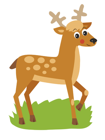 buck: Young Deer With Horns. Vector Animal Illustration, Just A Good Picture. Young Deer Buck. Young Deer Picture. Young Deer Alone. Small Deer With Horns. Tiny Deer With Horns. Illustration