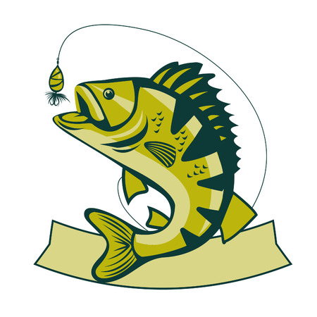Catching Bass Fish. Fish Color. Graphic Fish. Fish On A White Background. Bassfish. Bass Fishing Tournaments. Recreation Fishing. Big Fish. Fish Jumping. Fish. Bass Fishing Tackle.