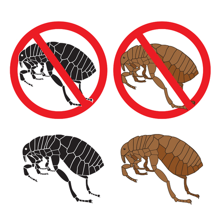 Flea Signs. Danger Sign. Flea And Hygiene. Stock Flea. Picture A Flea. Symbol Vector. Flea In The Sign. Colour Flea. Color Image Fleas. Black Picture Fleas. Flea Insect. Warning Signs. Vector Set.
