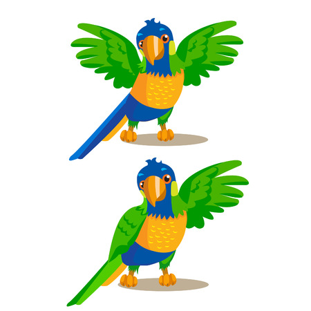 macaw parrot: Rainbow Parrot Pointing Or Showing Something With His Wing. Vector Illustration. Rainbow Parrot For Sale. Rainbow Parrot Location. Rainbow Parrot Mascot. Macaw Parrot On A White Background.