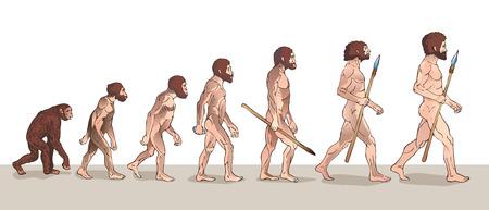 Evolução humana. Evolução do homem. Ilustrações Históricas. Ilustração do vetor de evolução humana. Desenvolvimento do Crescimento Progressivo. Macaco, Neandertal, Homo Sapiens. Primata Com Arma.