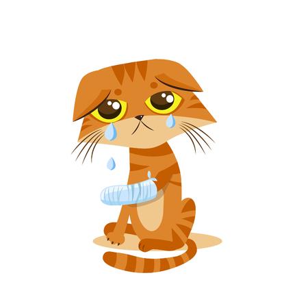 Triest Huilen Cat. Cartoon Vector Illustratie. Huilen Cat Meme. Kat gezicht. Beeld van de Kat. Huilen Cat Emoticon. Cat Tears. Kat wil om binnen te komen. Kat In De Nacht. The Poor Cat. Huilende Cat. Spalken Been.