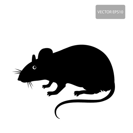 Mouse, Rat Vector. Rat Silhouette On The White Background. Rat Vector Disease. Harmful Rodent, Parasite. Vector Illustration
