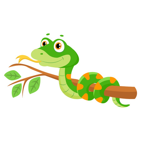 Illustration of cute green smiles snake on branch cartoon vector reptile isolated on white background, non venomous snake. Illustration