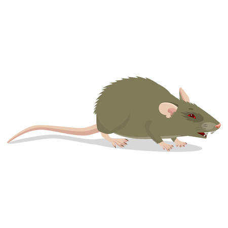 Evil Cartoon Rat Vector Clip Art Illustration. Angry Rat Sign Isolated On White Background. Harmful Rodent. House Mouse Vector Drawing.  イラスト・ベクター素材