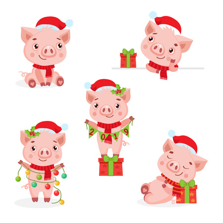 Set Of Cute Funny Pigs Vector. The Symbol Of The Chinese New 2019 Year. Vector Illustration On White Background. Christmas Pigs Vector.