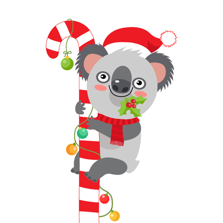 Funny Koala Christmas Vector. Merry Christmas From Australia Koala Christmas Card. Cute Animal Cartoon Character Holiday Vector Illustration On A White Background.