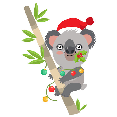 Funny Koala Christmas Vector. Merry Christmas From Australia. Cute Animal Cartoon Character Holiday Vector Illustration On A White Background. Koala In A Santa Hat Sitting On The Eucalyptus Tree.