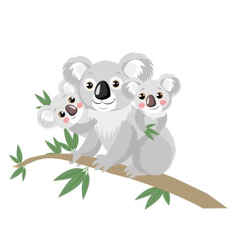 Familia Koala En Rama De Madera Con Hojas Verdes. El koala más divertido del animal australiano que se sienta en la rama del eucalipto. Ilustración vectorial de dibujos animados. Los koalas no son un tipo de oso.