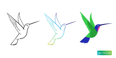Hummingbird Icon  Design Image On White Background. Vector Illustration.  イラスト・ベクター素材