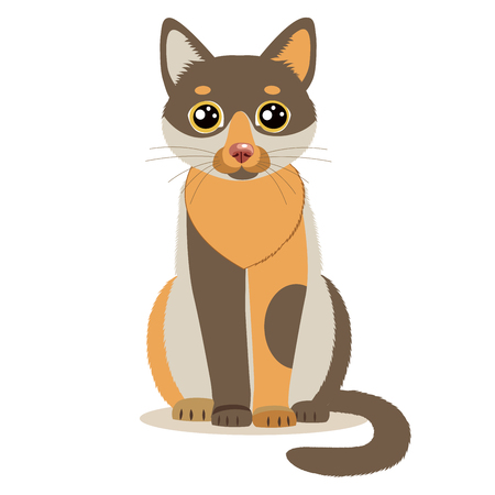 Cute Color Cartoon Cat Sitting In Front. Isolated On White Background. Sitting Cute Cat Flat Vector Illustration. Funny Character Mascot. Illustration